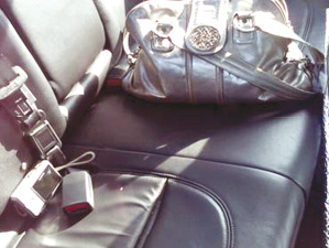 Car Break=PUrse &amp; Camera.tif